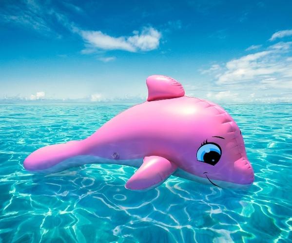 růžový delfín
