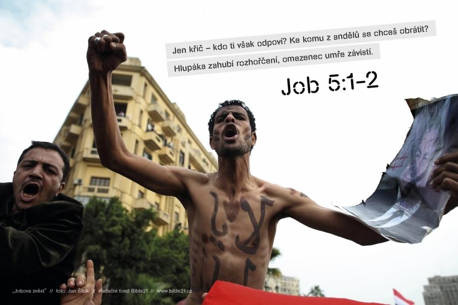 výstava Jobova zvěst