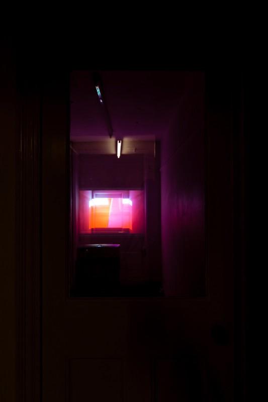 Holly Rowan Hesson - Overwrite, 2016
