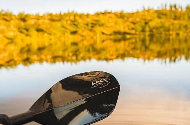 Anfibio Paddle