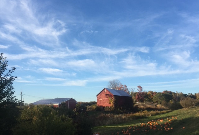 Rose Hill Farm Hudson Valley Orchard View of Catskills