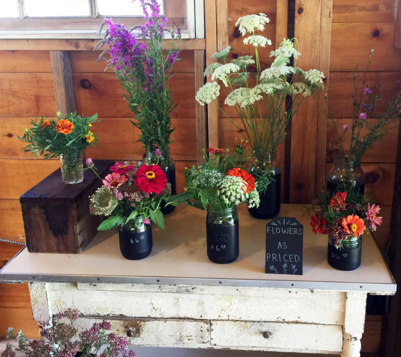 Freshly cut flowers at the farmstand