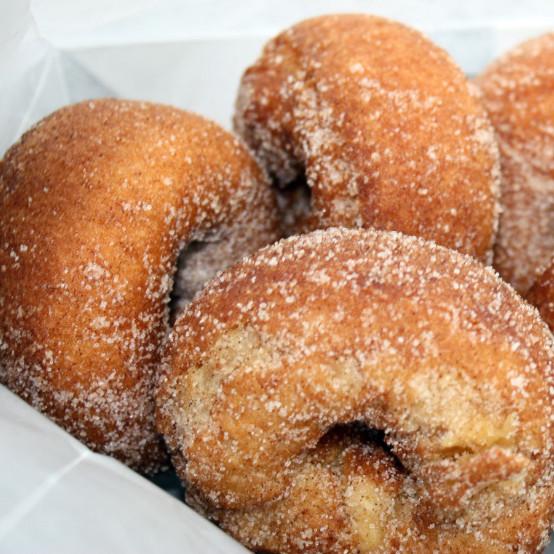 Rose Hill Farm Hudson Valley Pick Your Own Apples Cider Doughnuts