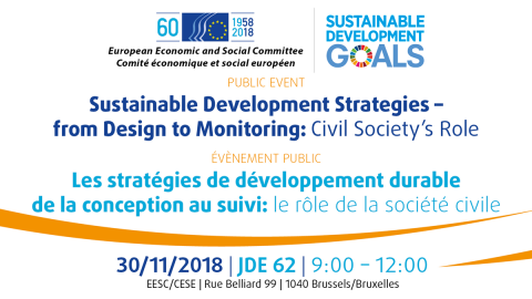 Sustainable Development Strategies – from Design to Monitoring: Civil Society's Role