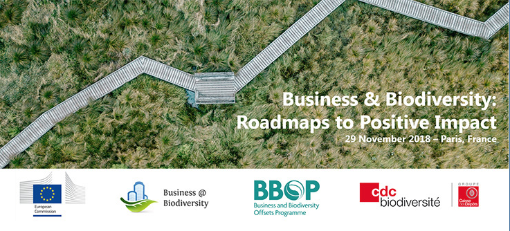 International Conference 'Business & biodiversity: Roadmaps to Positive Impact'