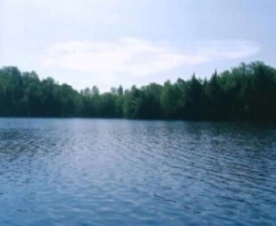 Lac des pins