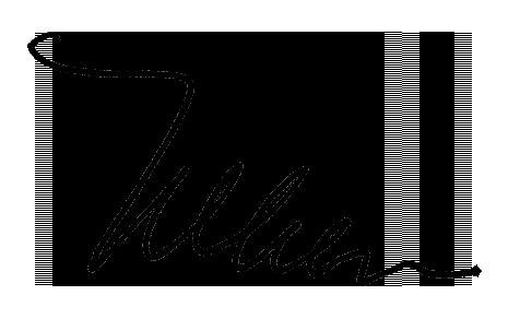 Virginia Nelsen signature