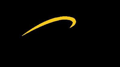 logo-ISV