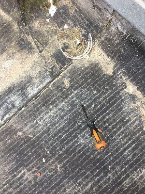 ImmoPass - État dégradé des revêtements de toiture