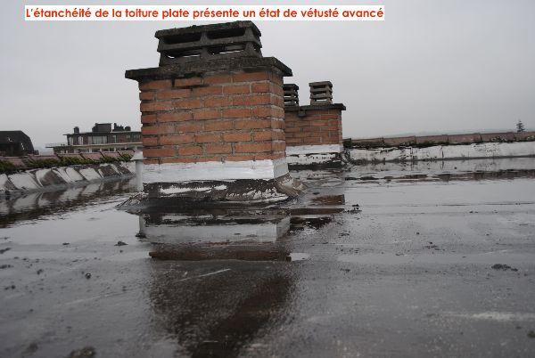 ImmoPass - Analyse technique d'un problème de toiture par un architecte