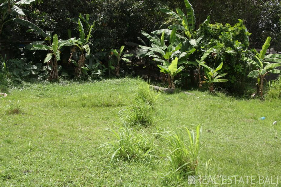 7.6 Are freehold land for sale in Pererenan - Canggu