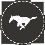 Lasso logo