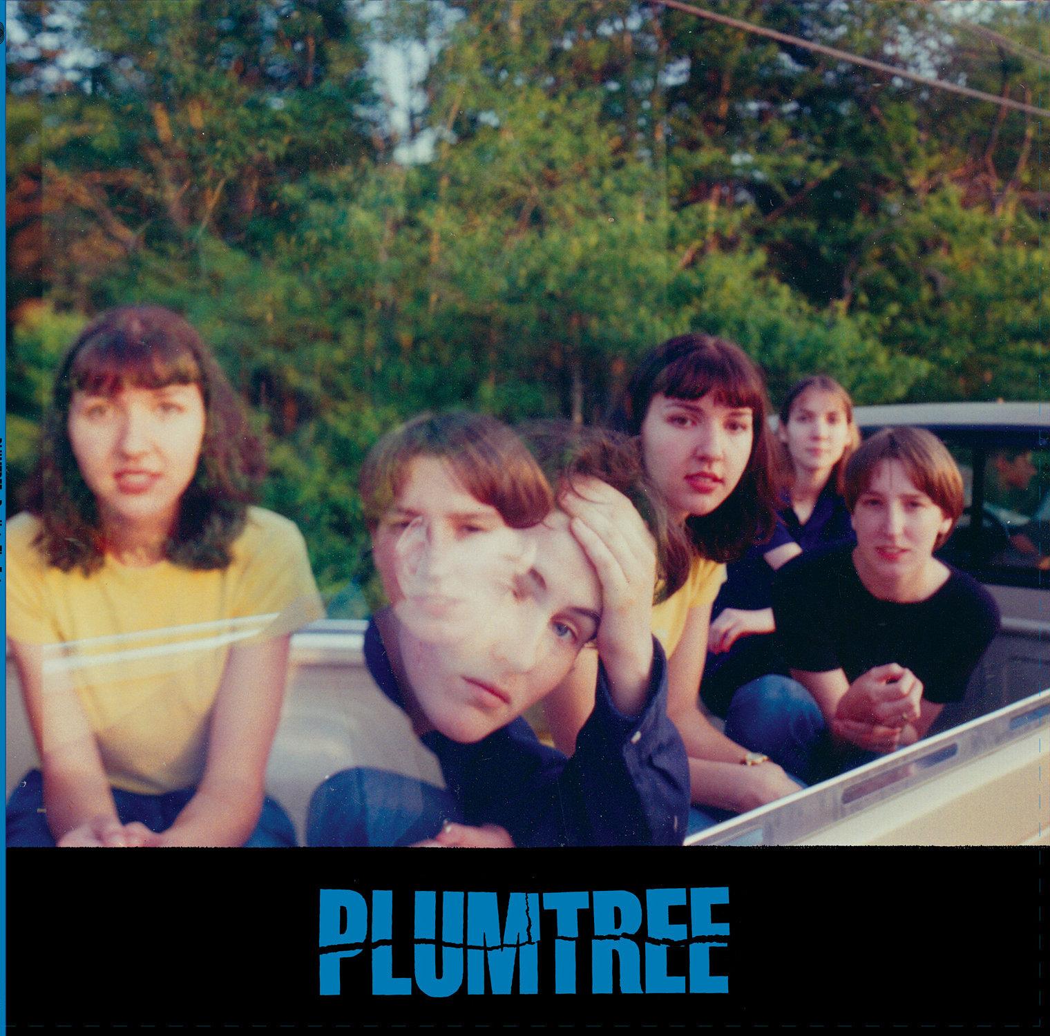 Plumtree Predicts the Future album cover