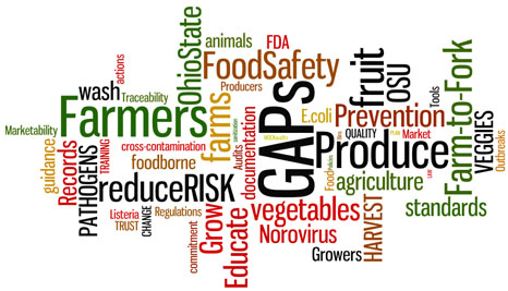 Word cloud of good ag practices terms