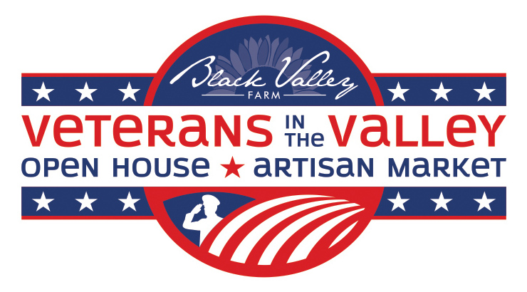 Veterans in the Valley logo in red, white, and blue