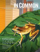 In Common Magazine - Fall/Winter 2013