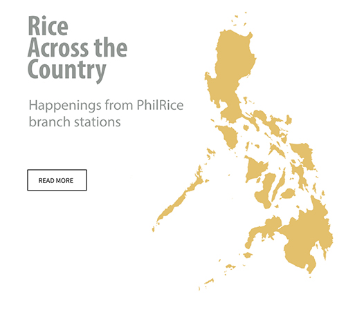 rice-across-the-country