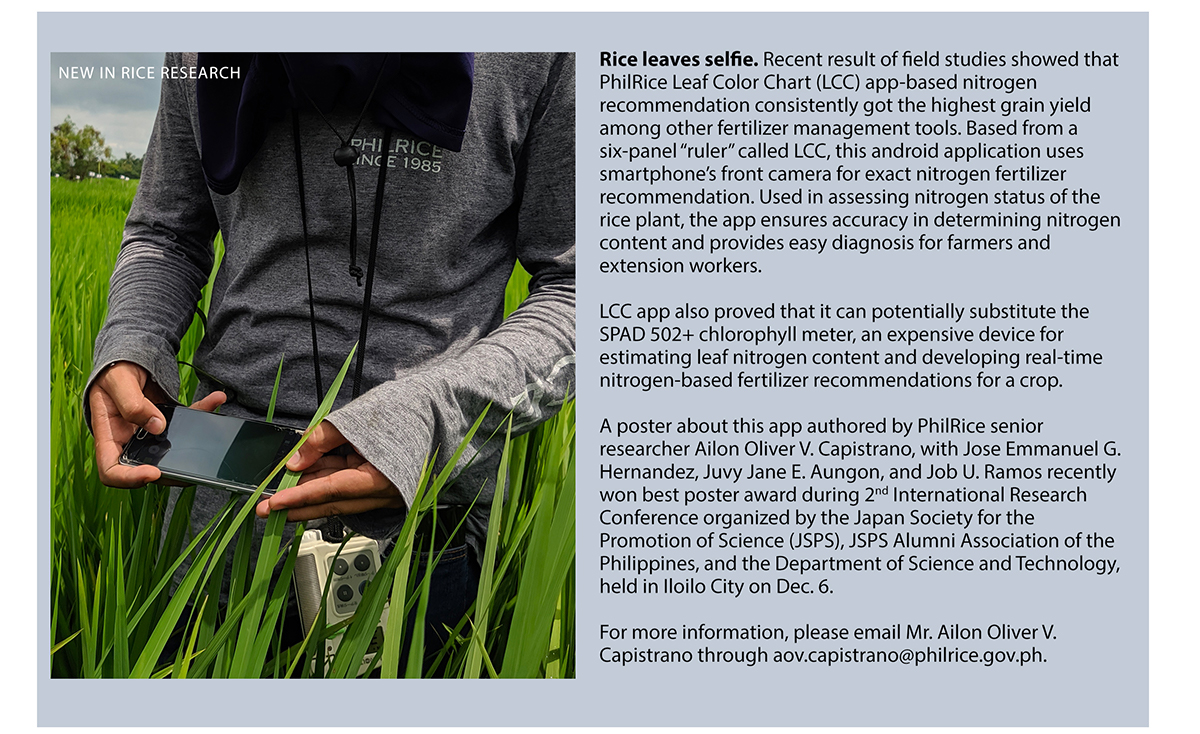 whats new in rice research