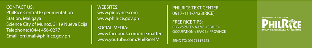 PhilRice E-newsletter Image