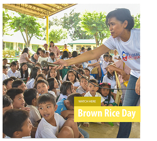 brown-rice-day