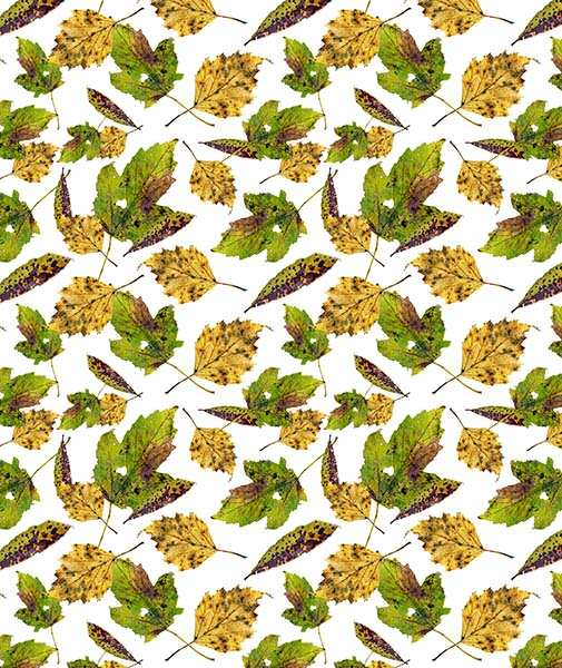 Autumn Leaves patter design by Rebecca Johnstone/Dainty Dora