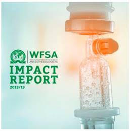 WFSA impact report