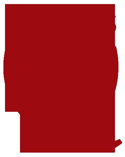Qualitrics logo