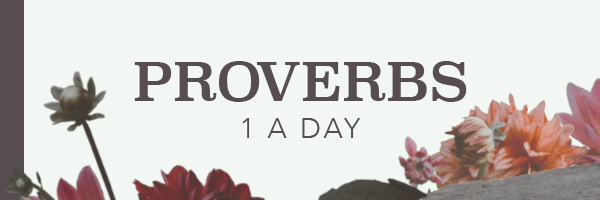 Proverbs: One a Day