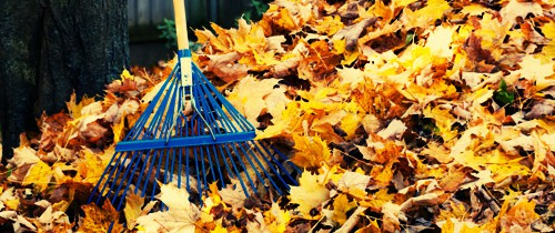 Raking leaves is just one of the ways to get ready for winter.