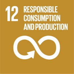 SDG #12 Responsible Consumption and Production