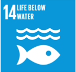SDG #14 Life Below Water