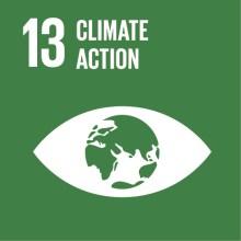 SDG #13 Climate Action