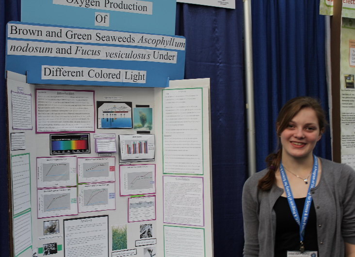 Meagan Currie of Greely High School took first place at the Maine State Science Fair with her project on oxygen production in seaweed.