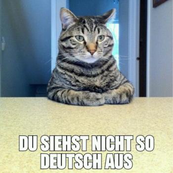 Meme (Ausschnitt) erstellt von Jugendlichen in einem bildmachen-Workshop in NRW. Bild: bildmachen