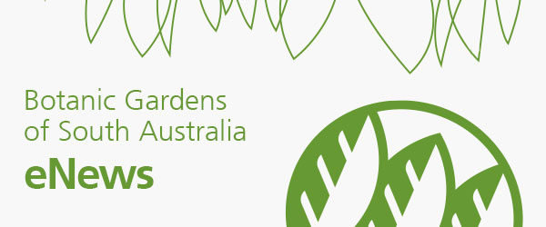 Botanic Gardens South Australia eNews
