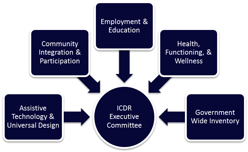 ICDR Executive Committee: Assistive Technology and Universal Design, Community Integration and Participation, Employment and Education, Health, Functioning, and Wellness, Government Wide Inventory