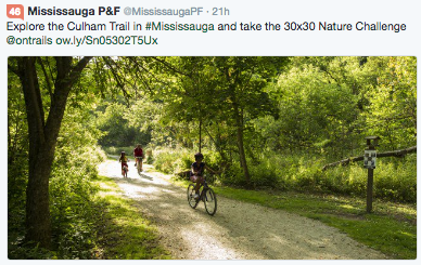 mississauga parks and forestry