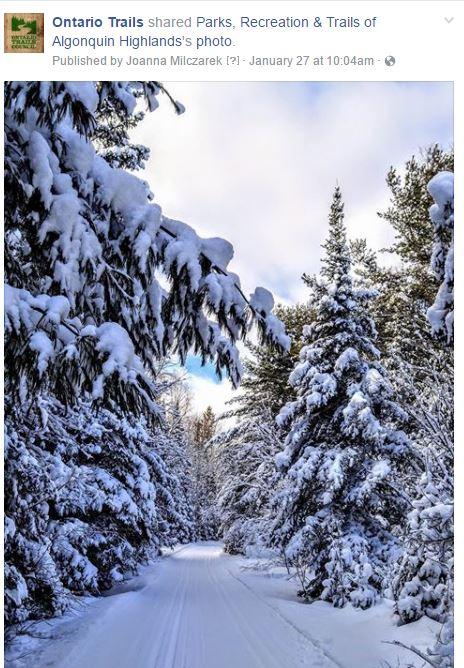 algonquin highlands