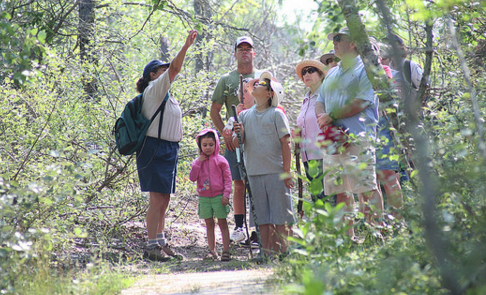 ontario parks sandbanks provincial park hikers on a trail