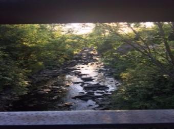 jan's trail from MargaritaO