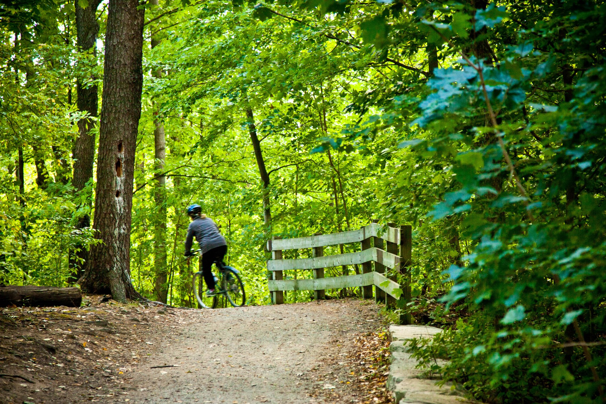town of oakville trails