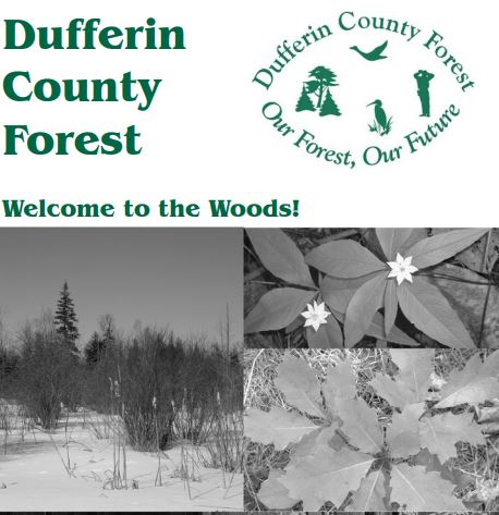 ontario trails dufferin county forest