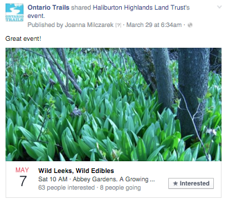 haliburton highlands wild leeks wild edibles event