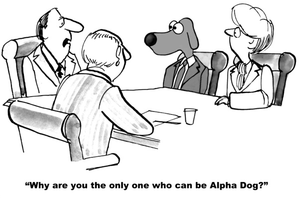 Image: Alpha Dog