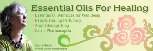 Essential Oils for Healing: Cynthe Brush's Blog Updates