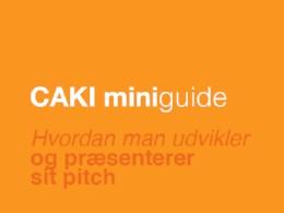 CAKI Miniguide - Pitching