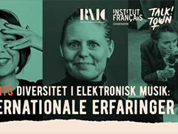 Diversitet i elektronisk musik