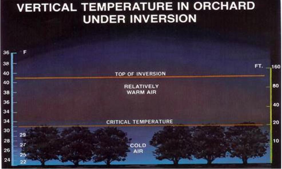 Orchard Temp Inversion