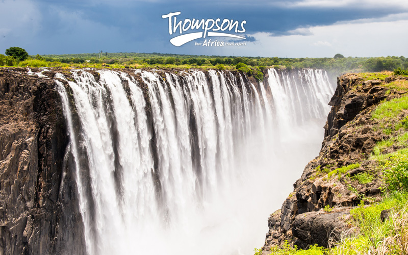 Zimbabwe Update from Thompsons Africa