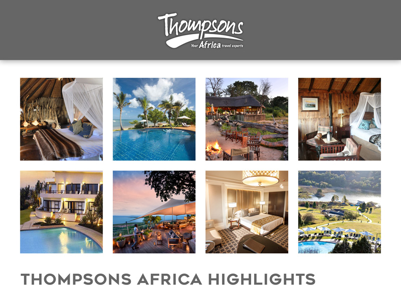 Thompsons Africa Highlights - 17 August 2018